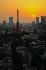 東京タワーの夕焼け