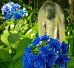 沢山綺麗な花が咲いてお地蔵さんも喜んでいます!!