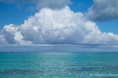 大きな空と大きな海