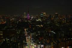 満月の東京タワー