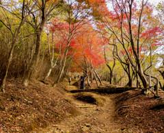 山登り 紅葉