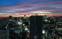 自社からの東京夜景
