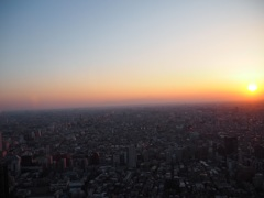 都庁からの夕陽