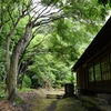 英勝寺の深緑