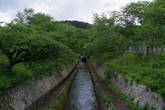 琵琶湖第一疎水 入り口