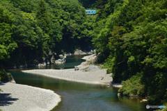 根尾川を行く