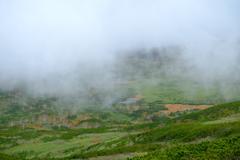 霧の御田ノ原
