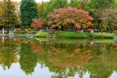 昭和記念公園の秋5