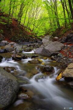 渓流の誘い7