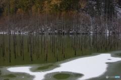 冬の自然湖3