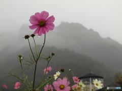 雨の日を楽しむ2