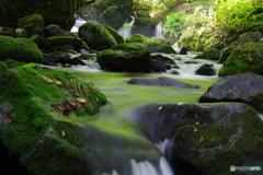 渓流の誘い2