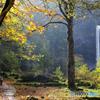 秋の滝撮り