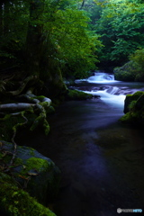 渓流の誘い