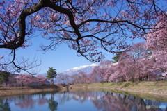 春の休日2
