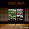 昭和の窓ガラス越しに見る贅