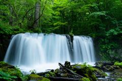 奥入瀬の名瀑