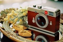私の美味しいカメラ