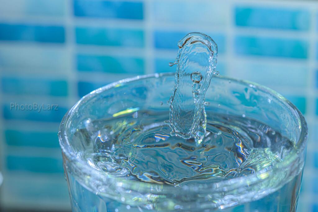 _water shield