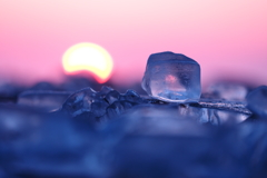 日の出見る氷坊や