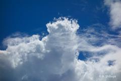 天空の綿菓子。