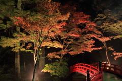 紅葉と赤橋