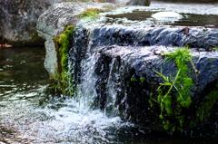 流れ出る命の水