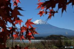 富士山と河口湖79