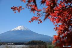 富士山と河口湖78