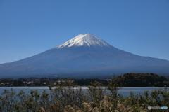 富士山と河口湖65