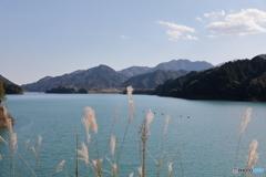 宮ヶ瀬湖 11月2日11