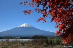 富士山と河口湖72