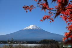 富士山と河口湖77
