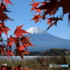富士山と河口湖80