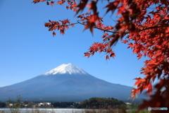 富士山と河口湖76