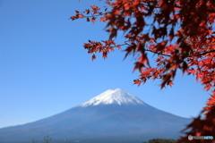 富士山と河口湖75