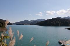 宮ヶ瀬湖 11月2日8