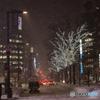 冬の札幌Ⅴ