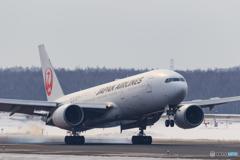 JAL Landing