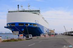 苫小牧港1