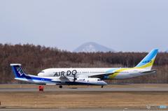ボンちゃん&AIR DO