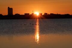 渡良瀬遊水地の日の出(1月1日)