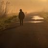 霧の朝の散歩