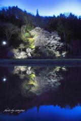 宵闇に春の幻想