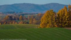 秋の丘〜②
