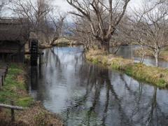 ワサビ田の水車