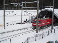 青函トンネルへ向かう貨物列車