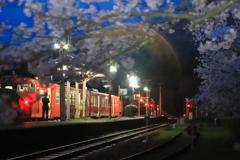 桜の志和地駅2