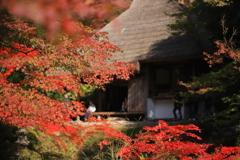 紅葉の吉水園