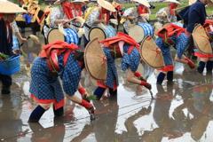 伝統文化2
